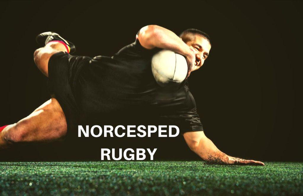 NORCESPED RUGBY césped artificial