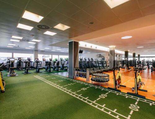 Sport Gym, el césped en el gimnasio